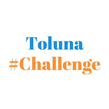 toluna-challenge
